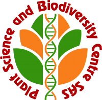 IBSAS Logo