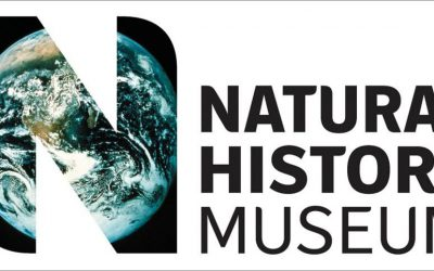 NHM London is hiring a Business Analyst in Science Digitisation!