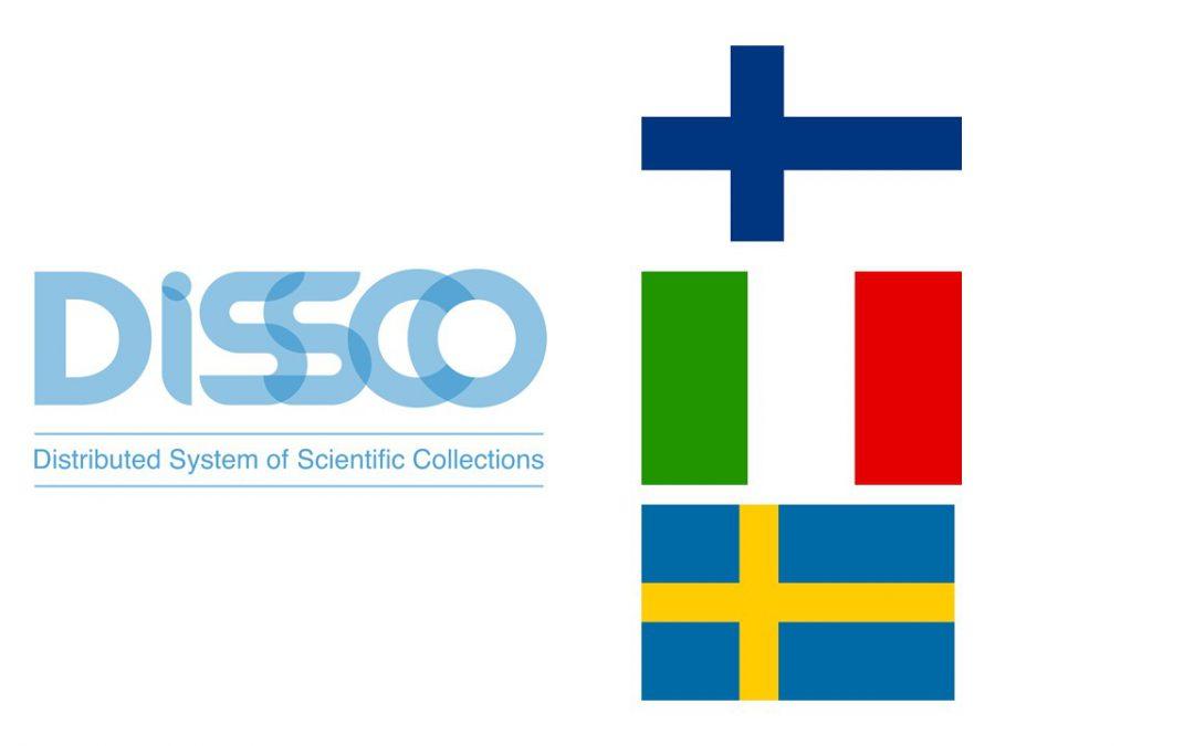 First DiSSCo national consortia