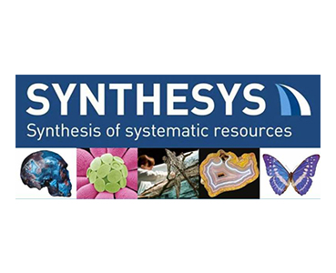 SYNTHESYS+