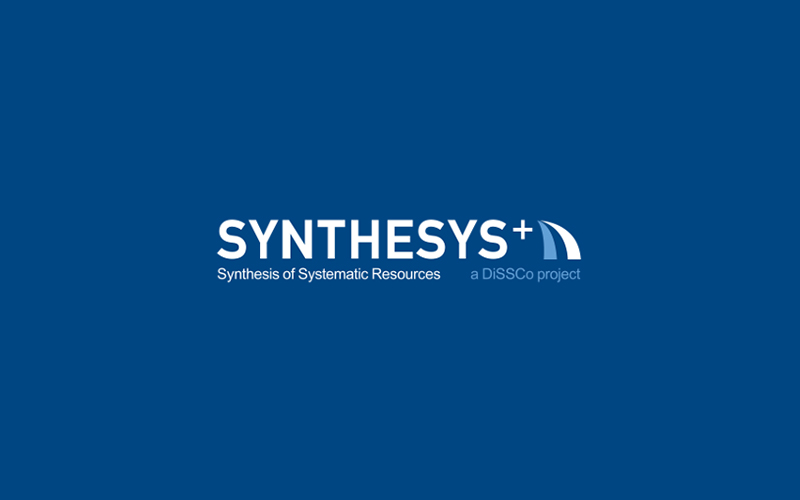 First Transnational Access Call of SYNTHESYS+ Launched